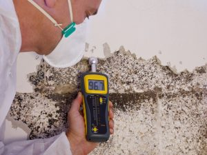 Termite protection